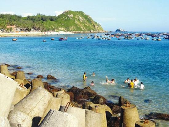 Khu bảo tồn sinh thái biển độc đáo thế giới sắp được hình thành tại Quy Nhơn